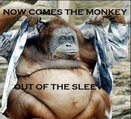 monkey_out_of_the_sleeve