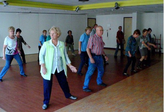 line_dancing_in_vlinderhei