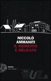 il-momento-c3a8-delicato