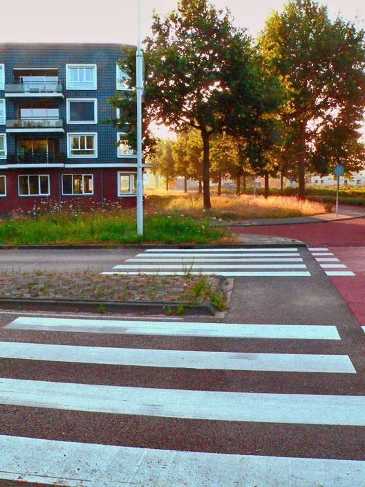 zebrapad_ringweg