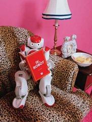 ik-robot