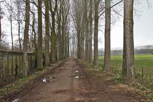 molenkampseweg3