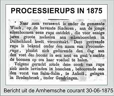 processierups1875
